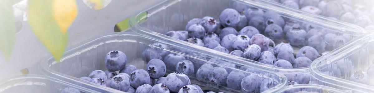 Flavourfresh Sweet Jane Blueberries first to market 2020