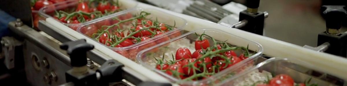 Highest food hygiene standards